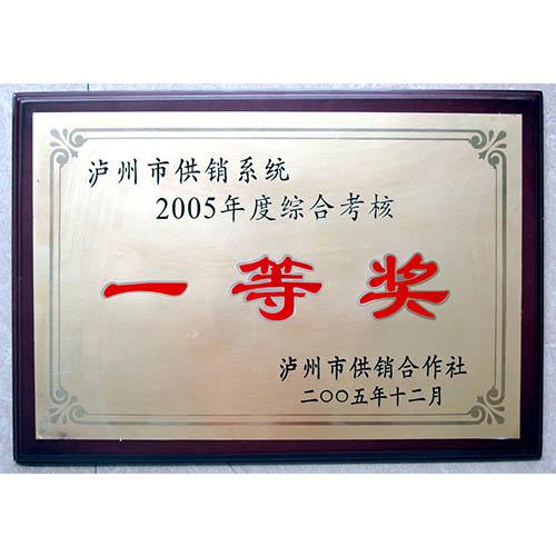 泸州市供销系统2005年度为农服务